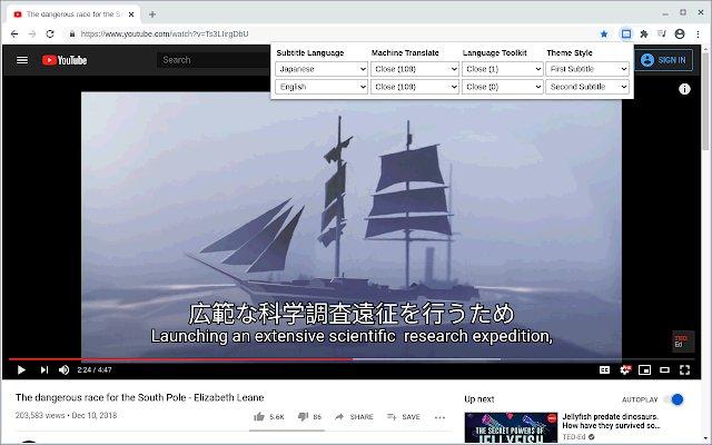 Dualsub 通用字幕渲染器的使用截图[2]