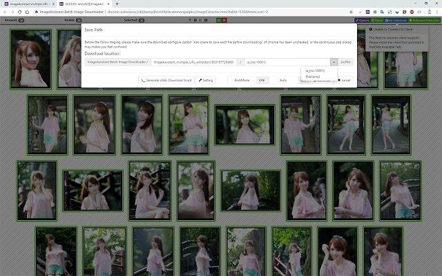 图片助手(ImageAssistant) 批量图片下载器的使用截图[4]