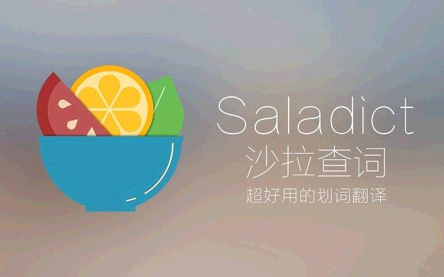 Saladict 沙拉查词的使用截图[2]